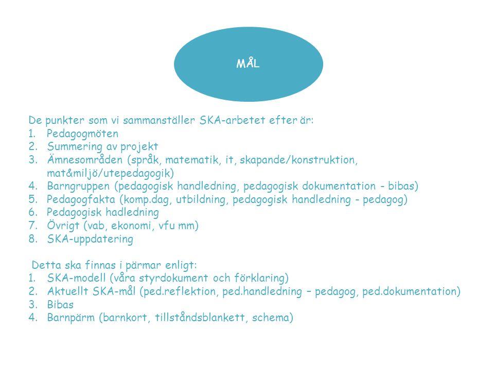 MÅL De punkter som vi sammanställer SKA-arbetet efter är: Pedagogmöten. Summering av projekt.