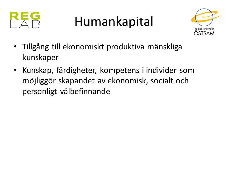 Humankapital Tillgång till ekonomiskt produktiva mänskliga kunskaper