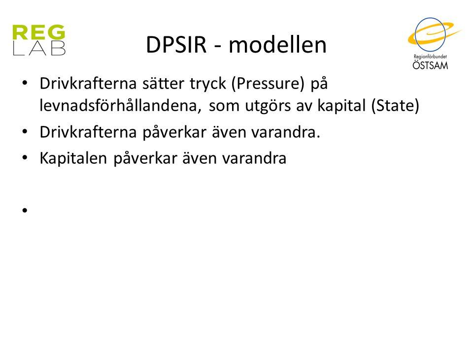DPSIR - modellen Drivkrafterna sätter tryck (Pressure) på levnadsförhållandena, som utgörs av kapital (State)