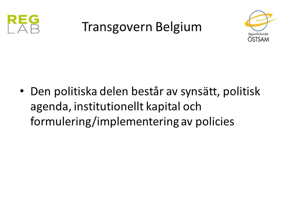 Transgovern Belgium Den politiska delen består av synsätt, politisk agenda, institutionellt kapital och formulering/implementering av policies.