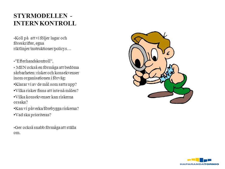 STYRMODELLEN - INTERN KONTROLL