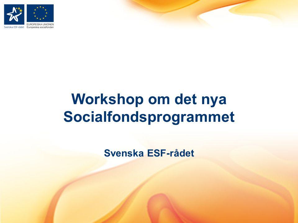 Workshop om det nya Socialfondsprogrammet