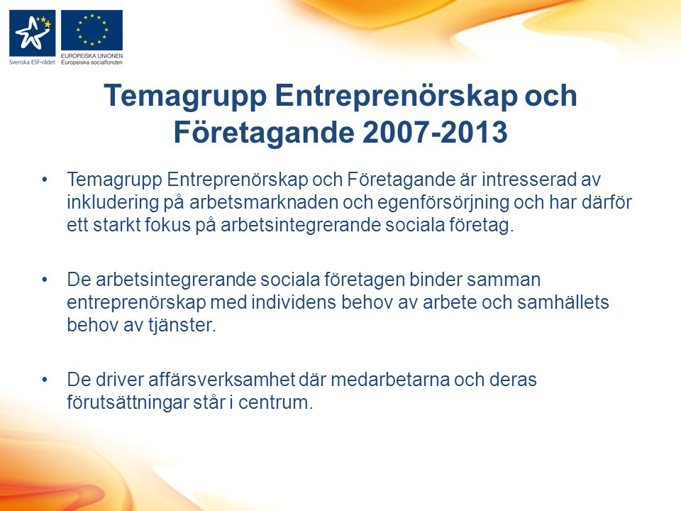 Temagrupp Entreprenörskap och Företagande 2007-2013