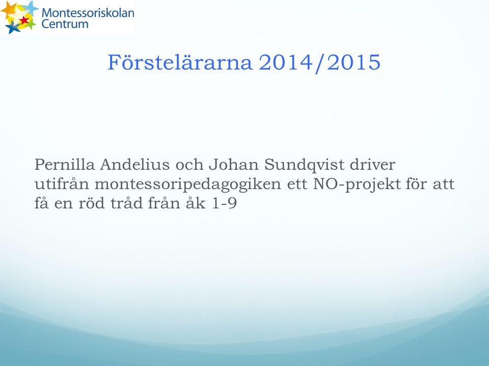 Förstelärarna 2014/2015