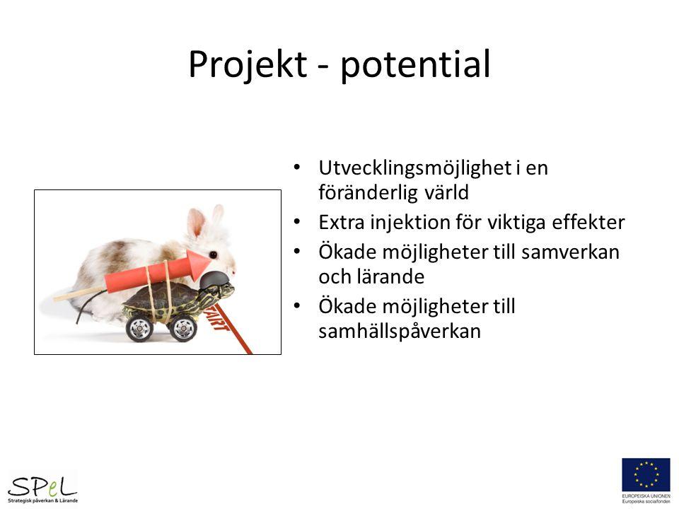 Projekt - potential Utvecklingsmöjlighet i en föränderlig värld