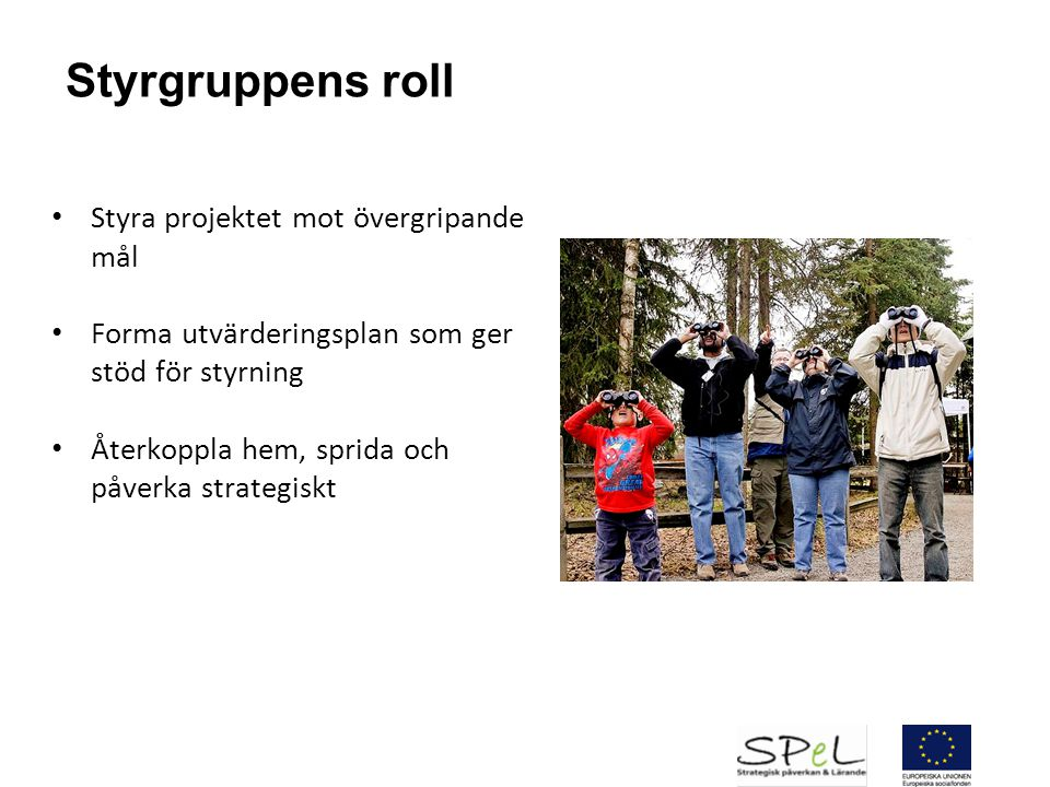 Styrgruppens roll Styra projektet mot övergripande mål