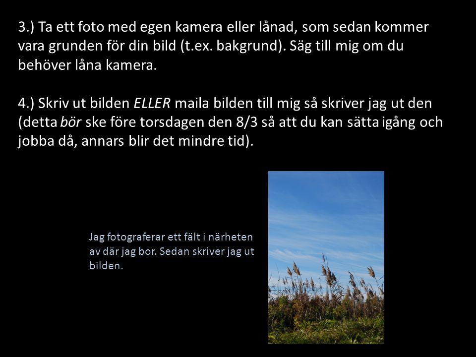 3.) Ta ett foto med egen kamera eller lånad, som sedan kommer vara grunden för din bild (t.ex. bakgrund). Säg till mig om du behöver låna kamera.