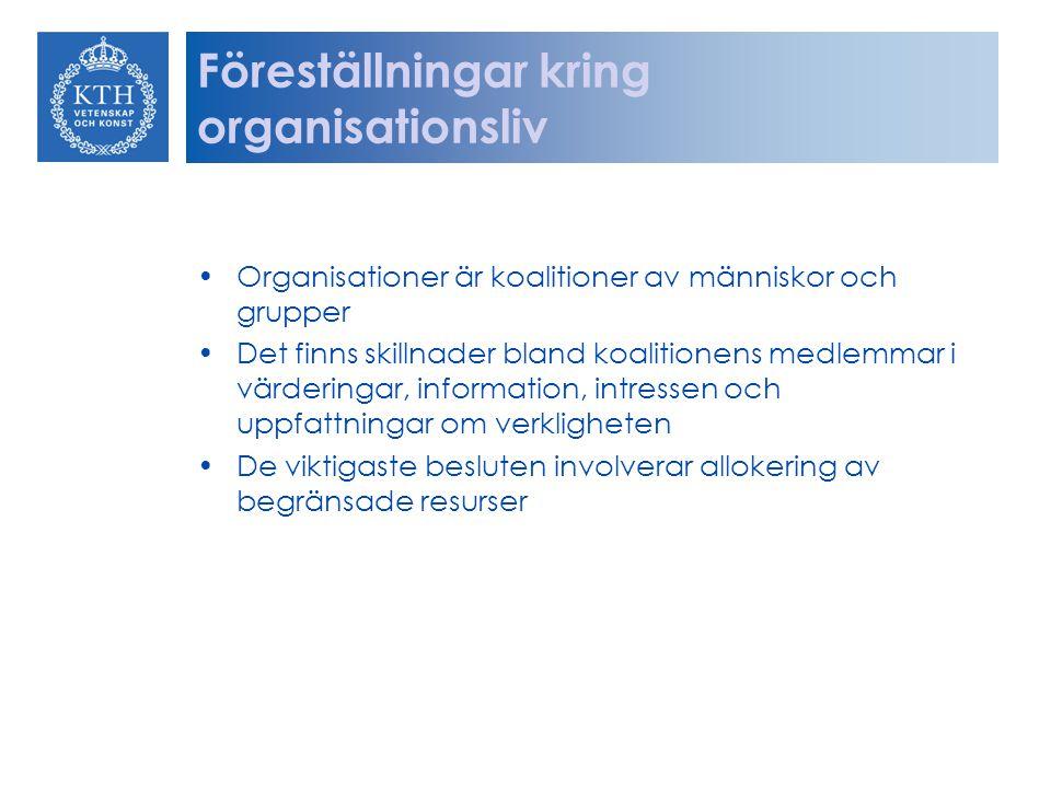 Föreställningar kring organisationsliv