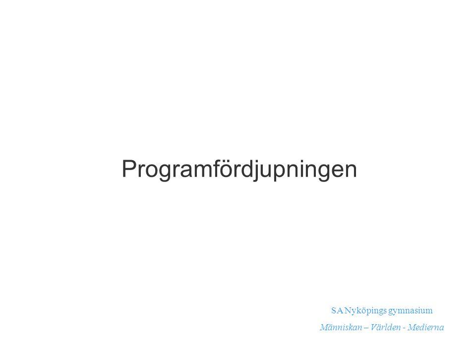 Programfördjupningen