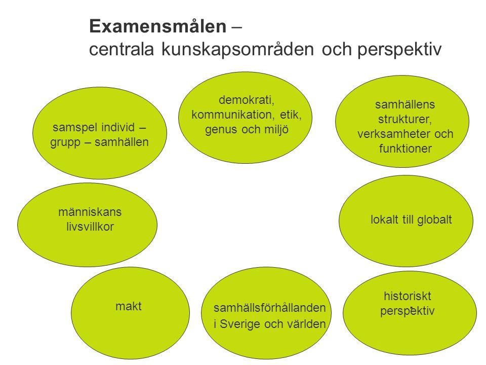 Examensmålen – centrala kunskapsområden och perspektiv
