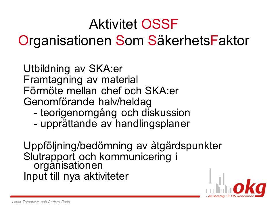 Aktivitet OSSF Organisationen Som SäkerhetsFaktor