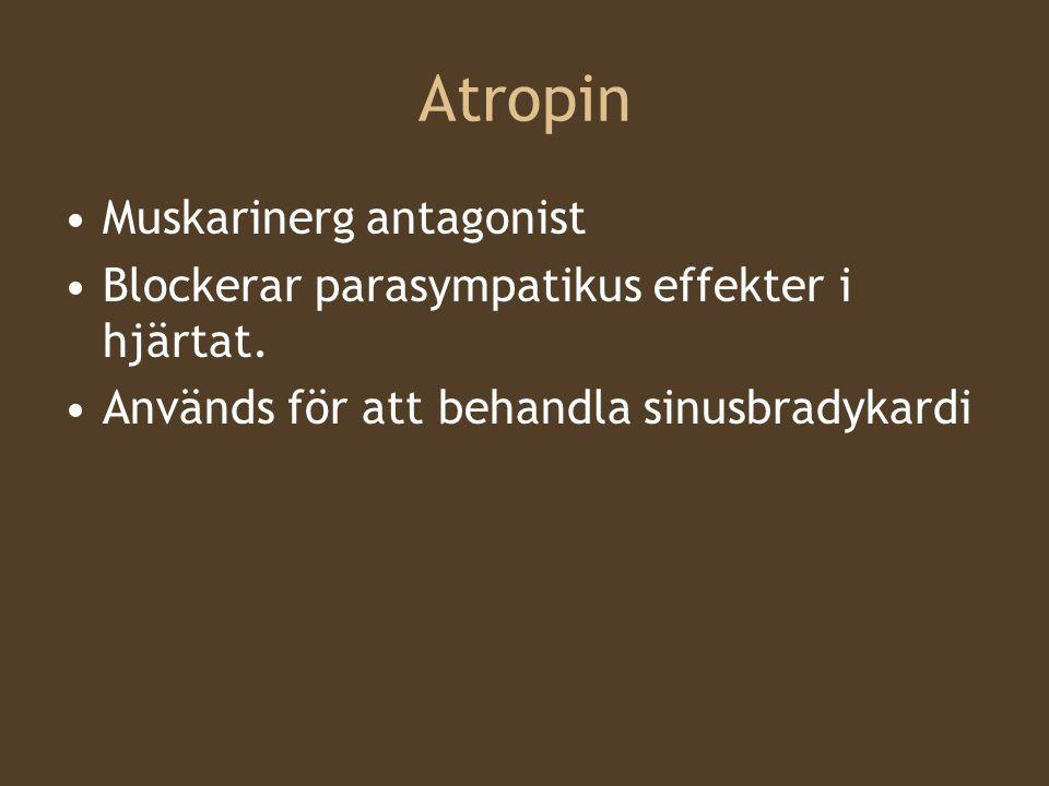 Atropin Muskarinerg antagonist