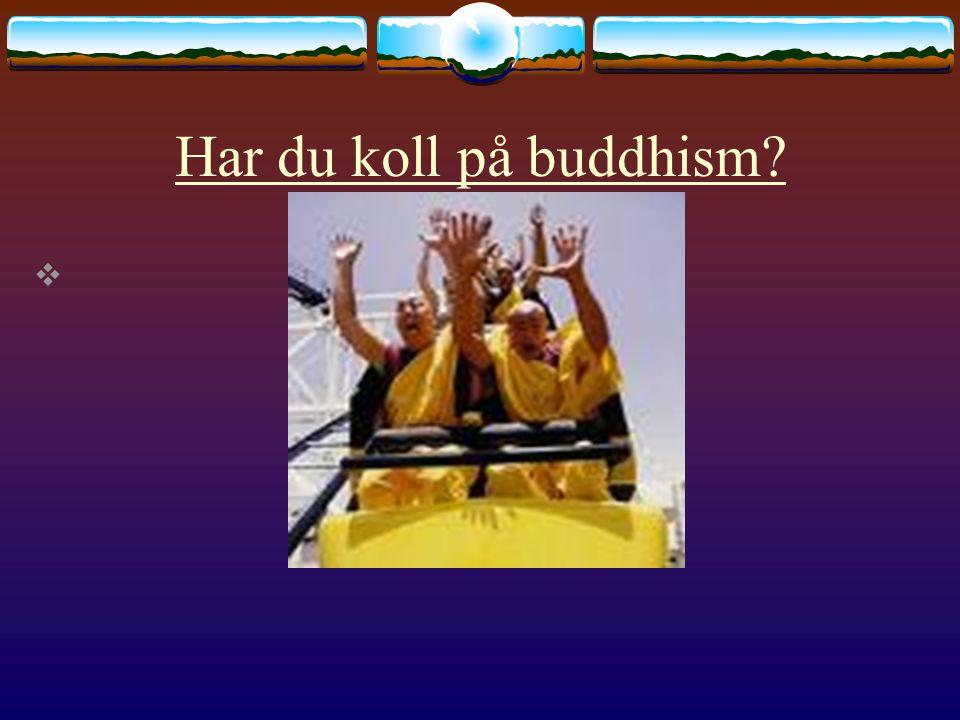 Har du koll på buddhism