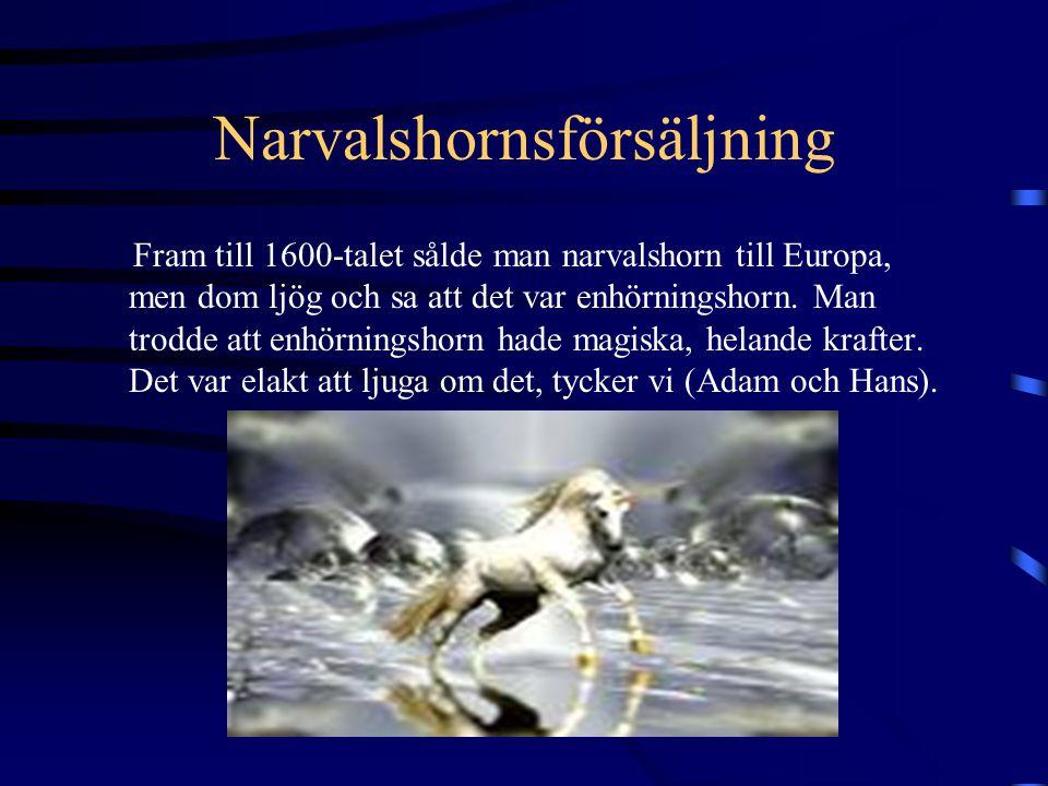 Narvalshornsförsäljning