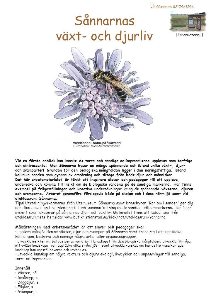 Sånnarnas växt- och djurliv Uteklassrum sÅNNARNA