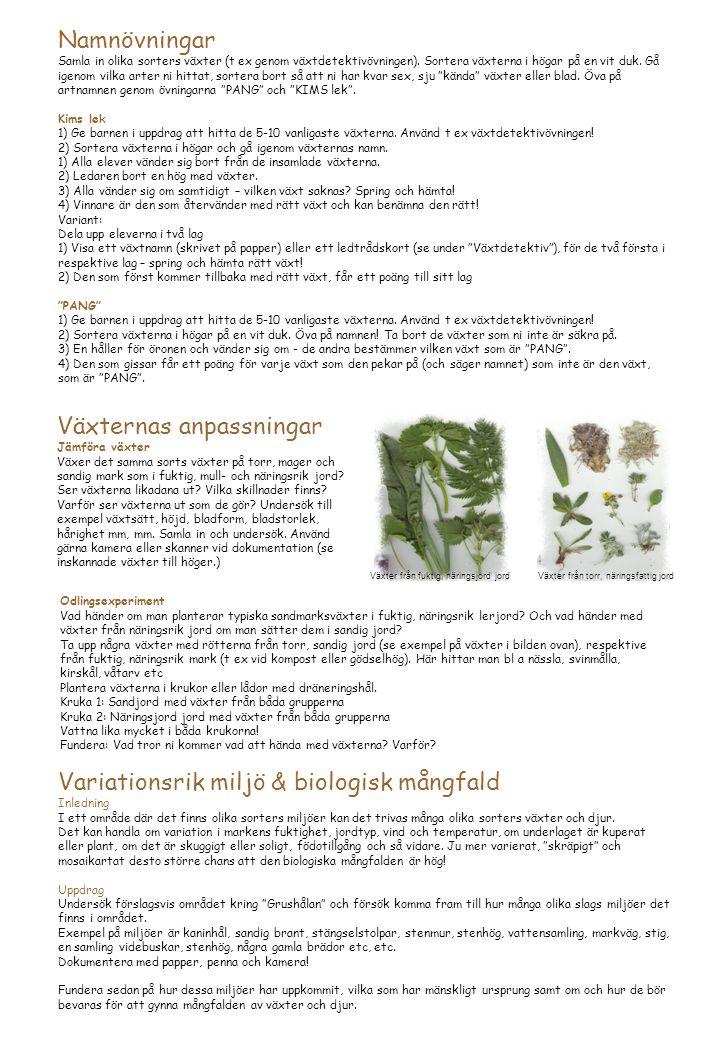 Växternas anpassningar