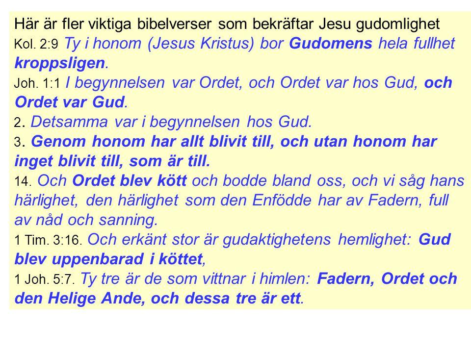 Här är fler viktiga bibelverser som bekräftar Jesu gudomlighet