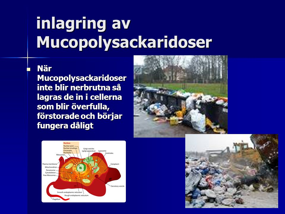 inlagring av Mucopolysackaridoser