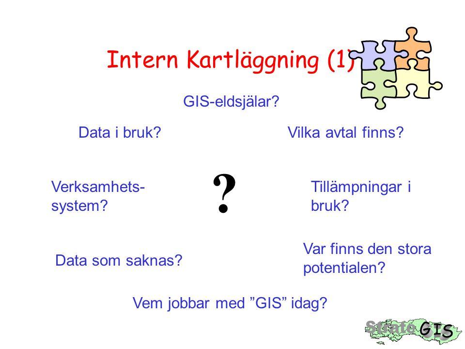 Intern Kartläggning (1)