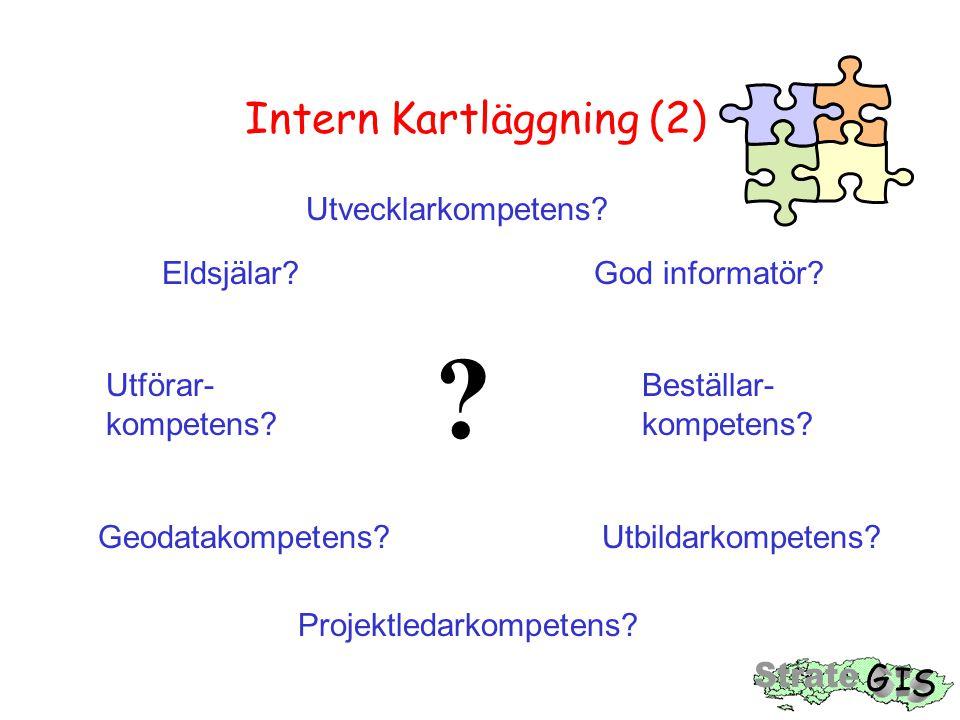 Intern Kartläggning (2)