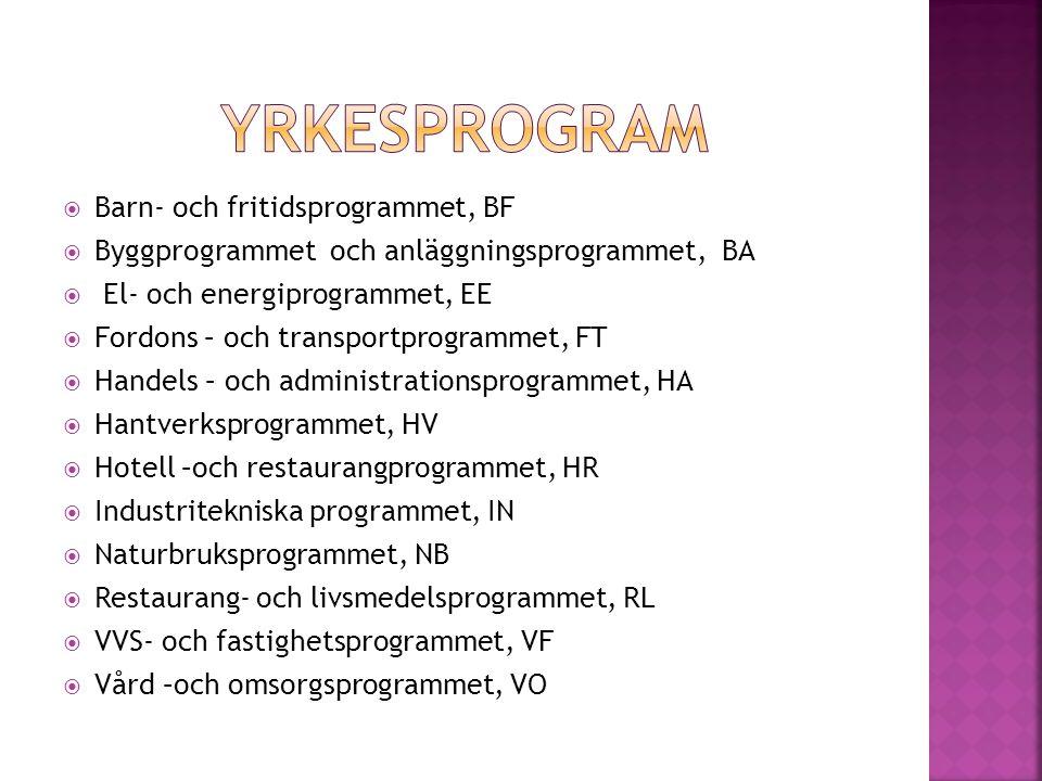 Yrkesprogram Barn- och fritidsprogrammet, BF