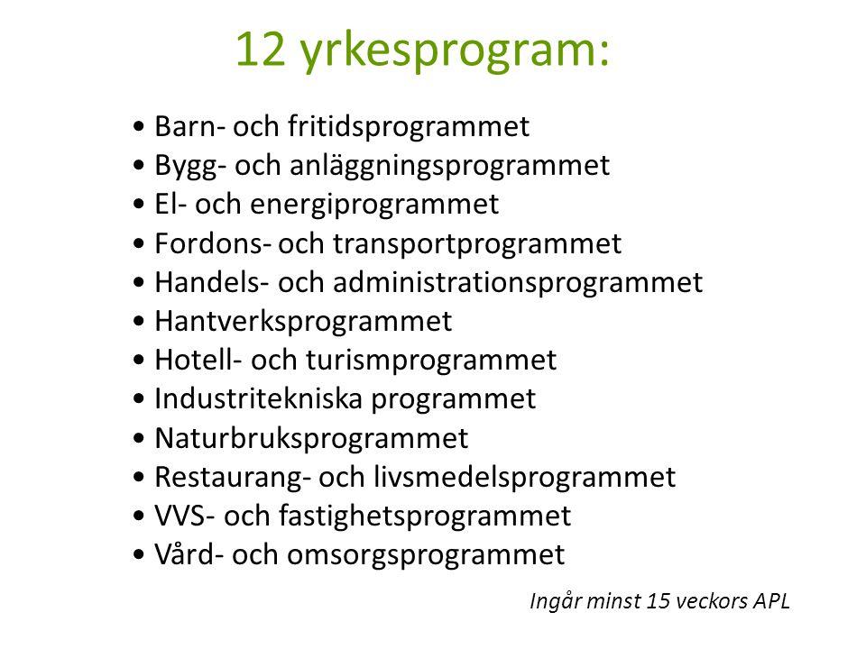 12 yrkesprogram: • Barn- och fritidsprogrammet