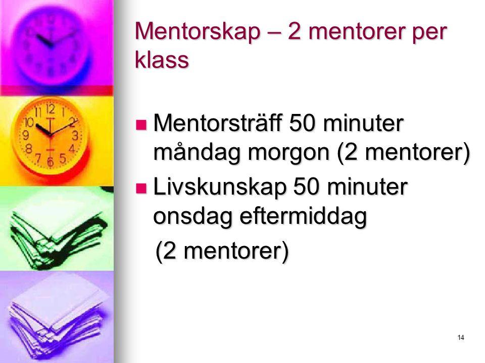 Mentorskap – 2 mentorer per klass