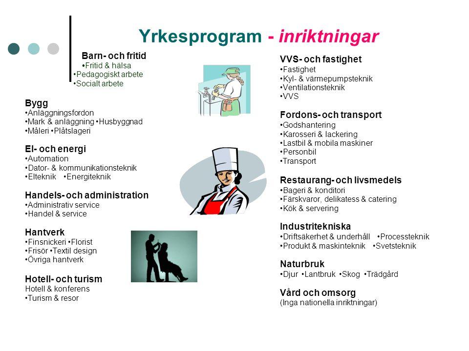 Yrkesprogram - inriktningar