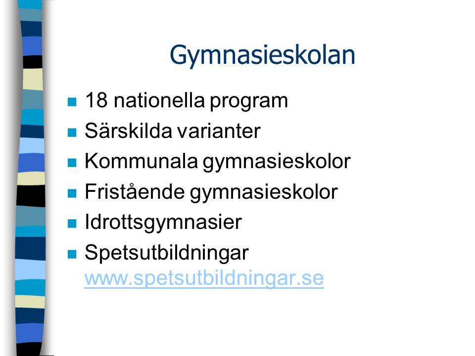 Gymnasieskolan 18 nationella program Särskilda varianter