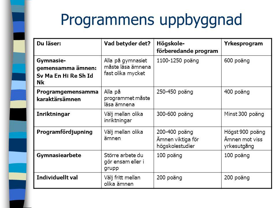 Programmens uppbyggnad