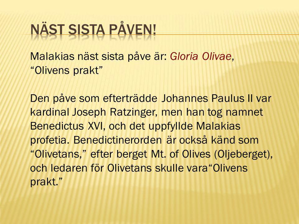 Malakias näst sista påve är: Gloria Olivae, Olivens prakt