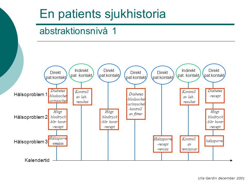 En patients sjukhistoria abstraktionsnivå 1
