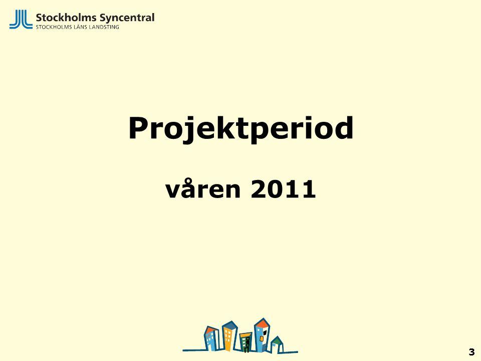 Projektperiod våren 2011