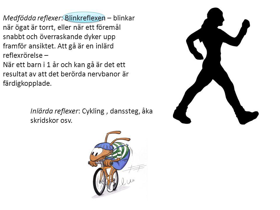 Inlärda reflexer: Cykling , danssteg, åka skridskor osv.