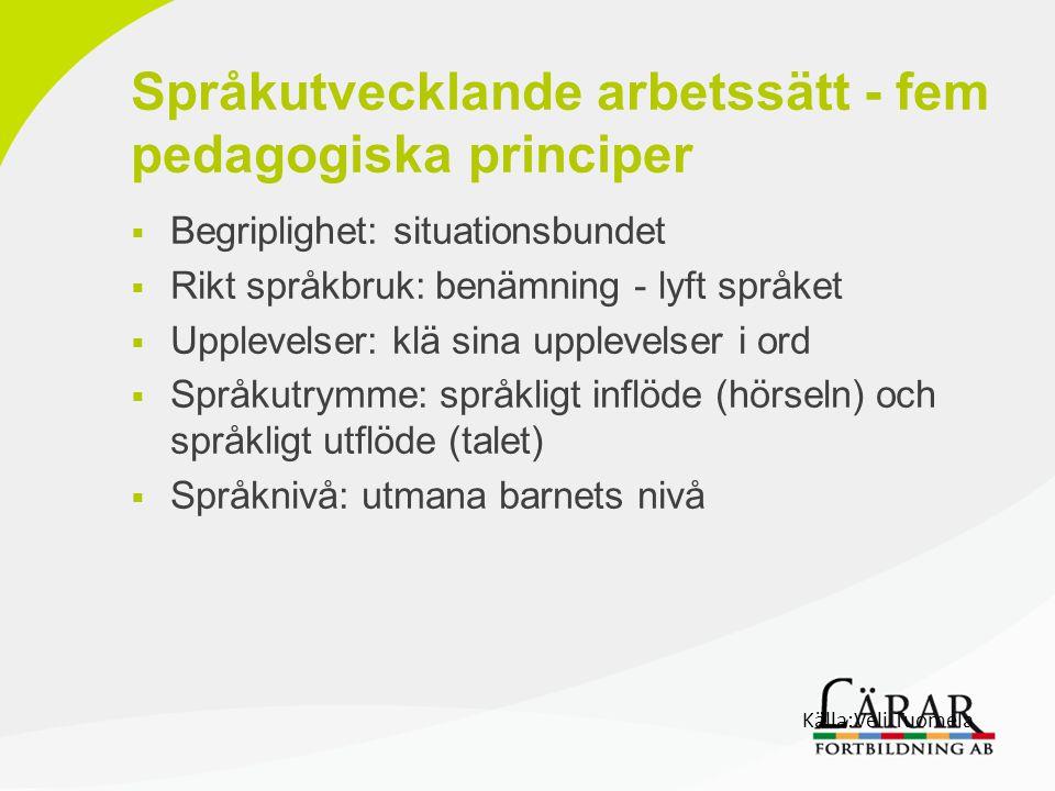 Språkutvecklande arbetssätt - fem pedagogiska principer