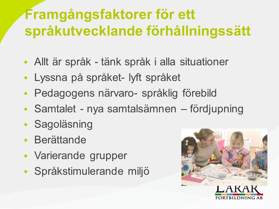 Framgångsfaktorer för ett språkutvecklande förhållningssätt