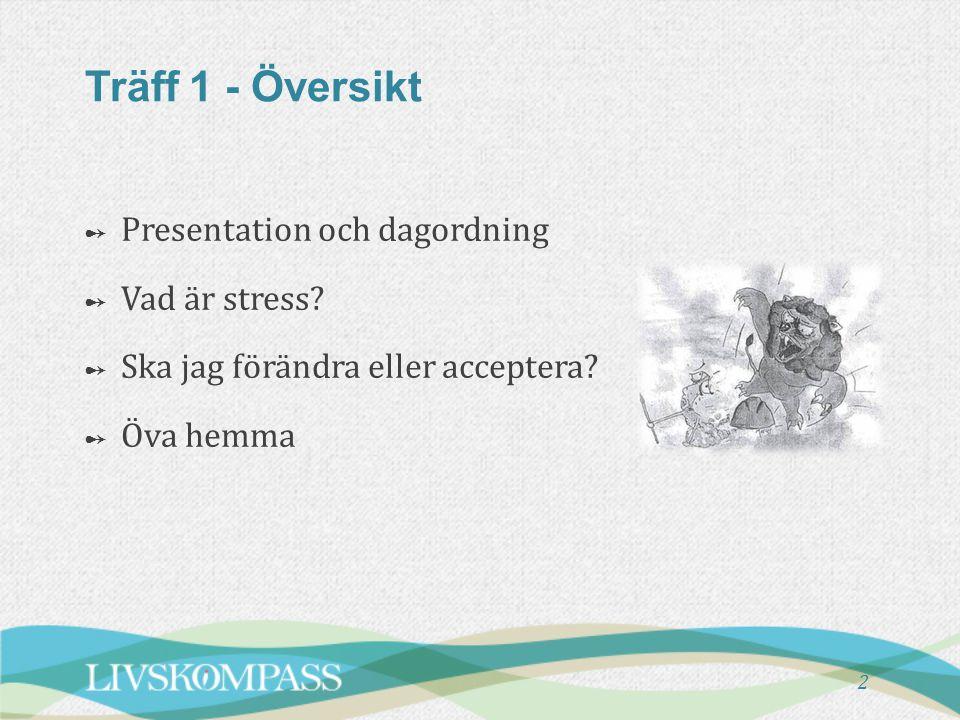 Träff 1 - Översikt Presentation och dagordning Vad är stress