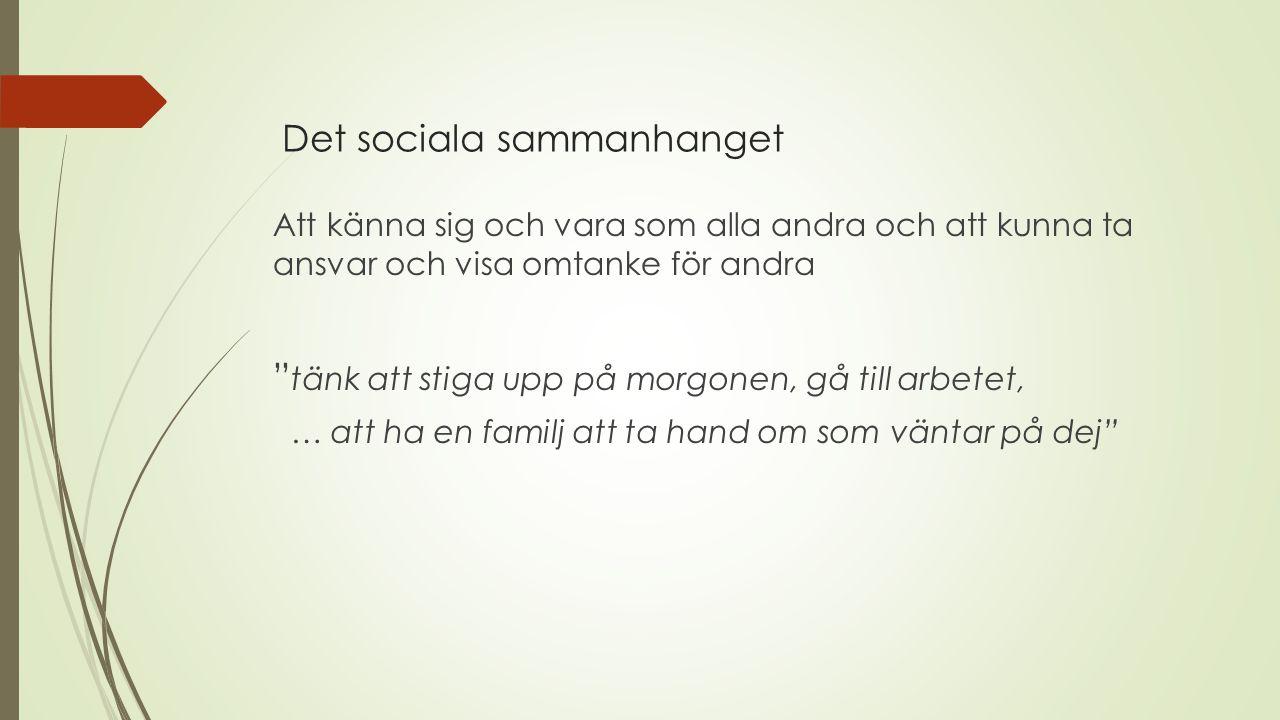 Det sociala sammanhanget