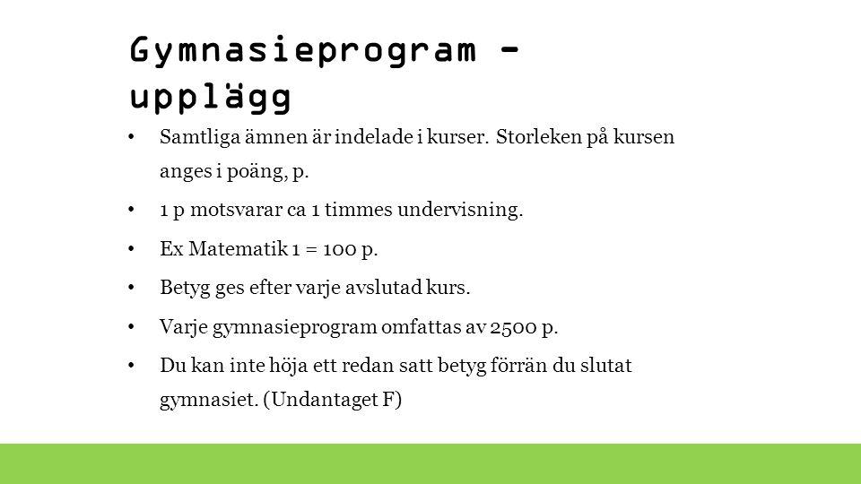 Gymnasieprogram - upplägg