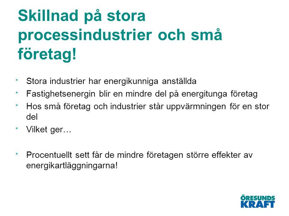 Skillnad på stora processindustrier och små företag!