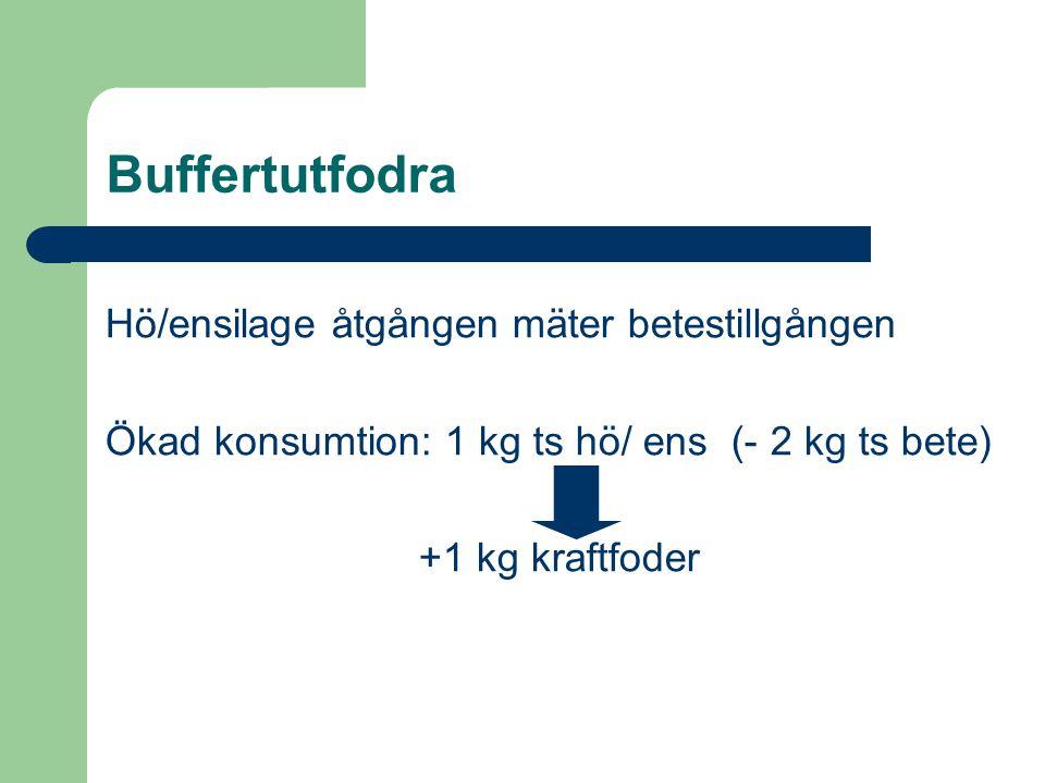 Buffertutfodra Hö/ensilage åtgången mäter betestillgången