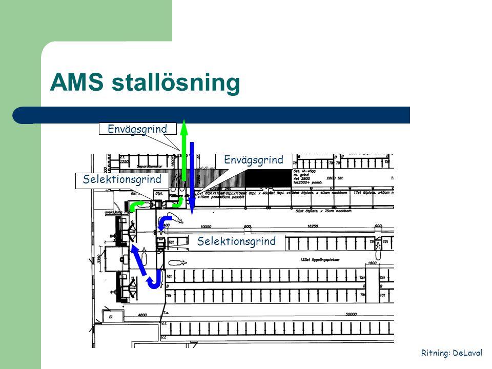AMS stallösning Envägsgrind Envägsgrind Selektionsgrind