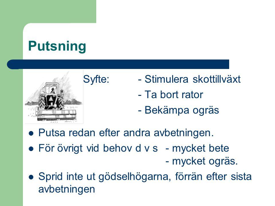 Putsning Syfte: - Stimulera skottillväxt - Ta bort rator