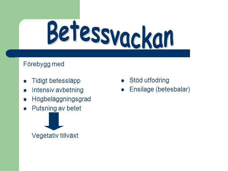 Betessvackan Förebygg med Stöd utfodring Tidigt betessläpp