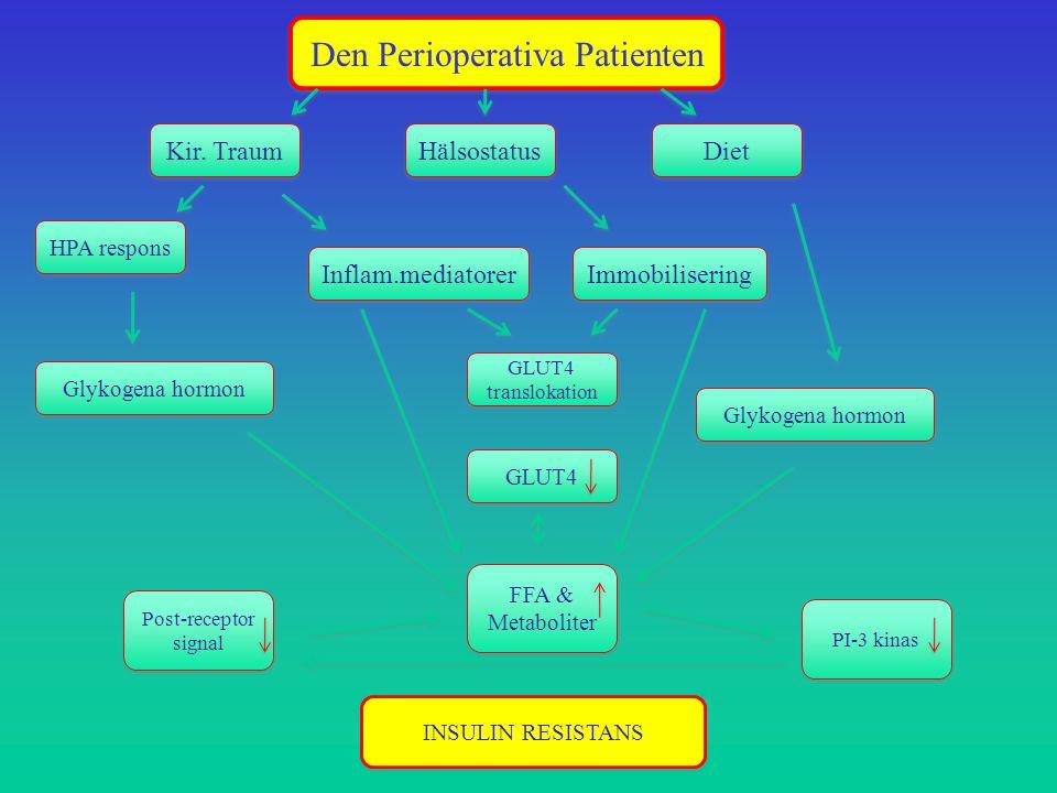 Den Perioperativa Patienten