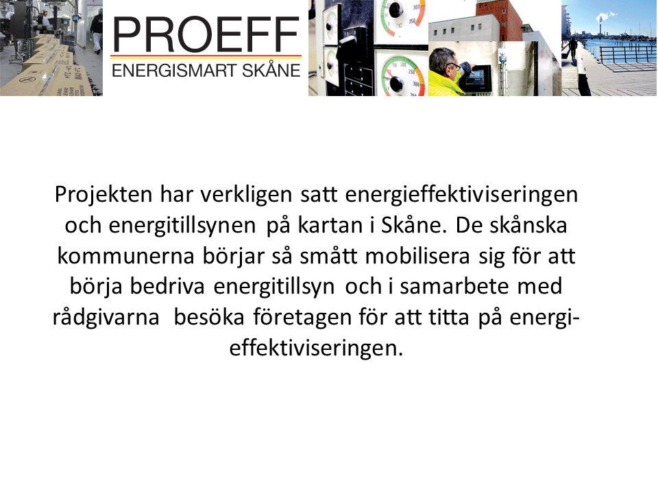 Projekten har verkligen satt energieffektiviseringen och energitillsynen på kartan i Skåne.
