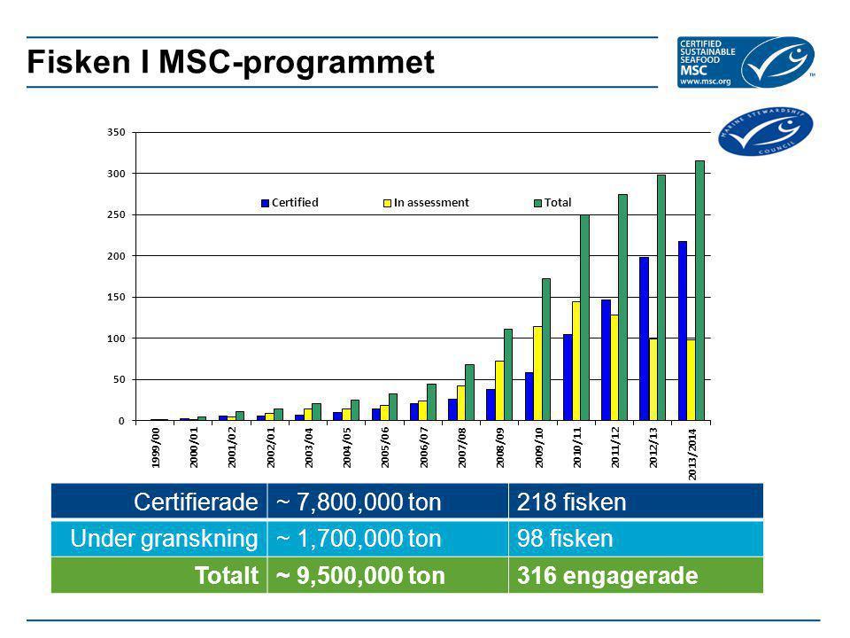 Fisken I MSC-programmet