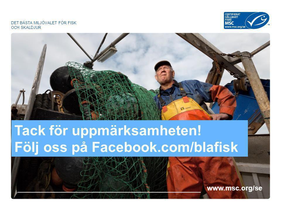 Tack för uppmärksamheten! Följ oss på Facebook.com/blafisk