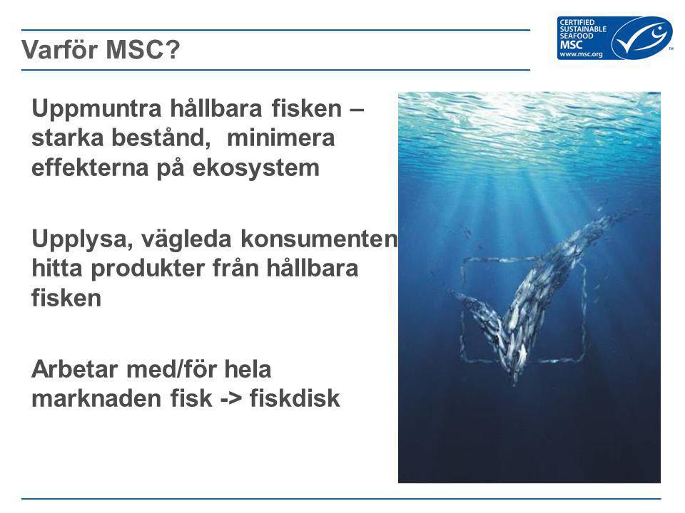 Varför MSC