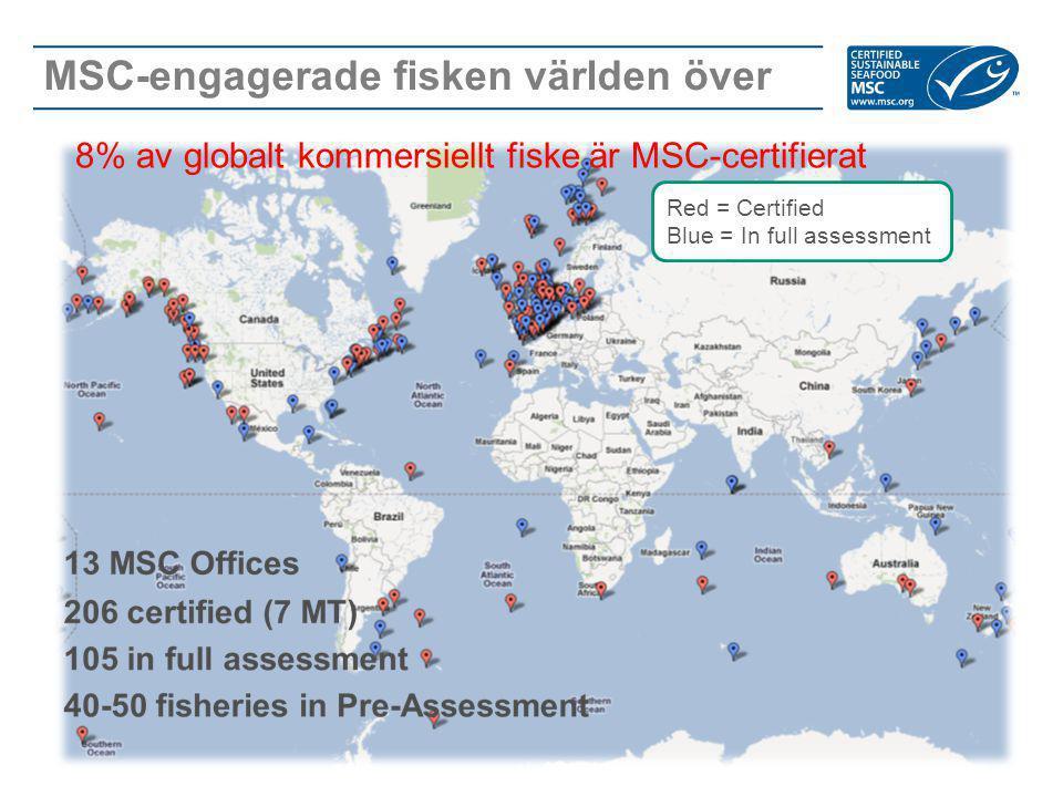MSC-engagerade fisken världen över